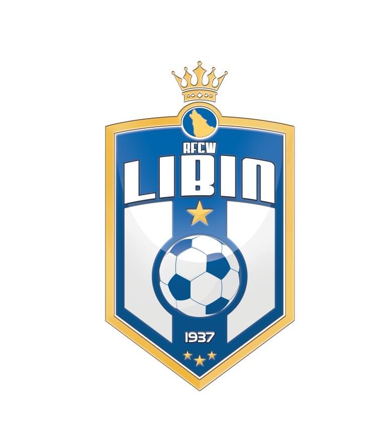 1 - Libin